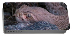 Rattlesnake Portrait Portable Battery Charger