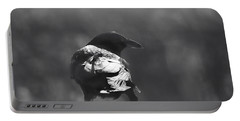 Portable Battery Charger featuring the photograph Raven In The Sun by Susan Capuano