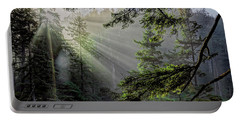 Rays Through An Oregon Rain Forest Portable Battery Charger