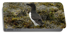 Razorbill Portable Battery Charger by Judd Nathan