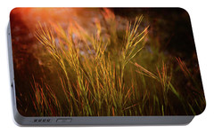 Portable Battery Charger featuring the photograph Reaching For The Sunset Dark by Mary Jo Allen