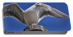 Ready To Soar Portable Battery Charger