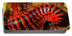 Red Almond Millipede Portable Battery Charger