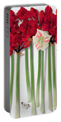 Red Amaryllis With Butterfly Portable Battery Charger