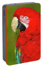 Portable Battery Charger featuring the photograph Red And Green by Tony Beck
