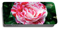 Red And Pink Floral Candy Rose Garden 490 Portable Battery Charger