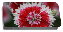 Red And White Flower Portable Battery Charger by Tim Stanley