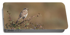 Red-backed Shrike Juv. - Lanius Collurio Portable Battery Charger