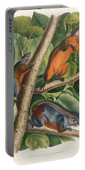 Red Bellied Squirrel  Portable Battery Charger by John James Audubon