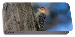 Red-bellied Wodpecker 3 Portable Battery Charger