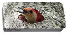 Red-bellied Woodpecker 02 Portable Battery Charger by Al Powell Photography USA
