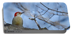 Portable Battery Charger featuring the photograph Red-bellied Woodpecker 1137 by Michael Peychich