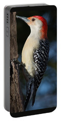 Red-bellied Woodpecker 3 Portable Battery Charger