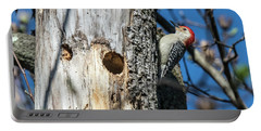 Red-bellied Woodpecker At His Home Portable Battery Charger