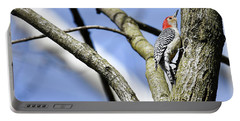 Red-bellied Woodpecker Portable Battery Charger by Gary Wightman
