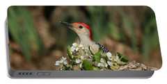 Red-bellied Woodpecker In Spring Portable Battery Charger