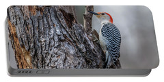 Portable Battery Charger featuring the photograph Red Bellied Woody by Paul Freidlund