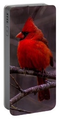 Red Bird Portable Battery Charger
