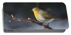 Red-breasted Robin Portable Battery Charger
