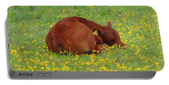 Red Calf In The Buttercup Meadow Portable Battery Charger