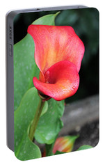 Portable Battery Charger featuring the photograph Red Calla Lily by Katie Wing Vigil