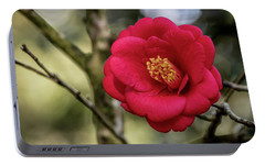Portable Battery Charger featuring the photograph Red Camelia 05 by Gregory Daley  PPSA