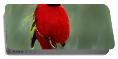 Red Cardinal Painting Portable Battery Charger