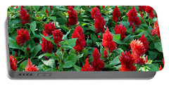 Portable Battery Charger featuring the photograph Red Celosia Garden by Glenn McCarthy Art and Photography