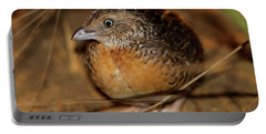 Red-chested Button-quail Portable Battery Charger