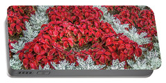 Portable Battery Charger featuring the photograph Red Coleus And Dusty Miller Plants by Sue Smith