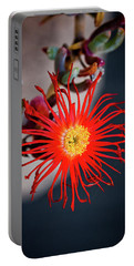 Red Crab Flower Portable Battery Charger