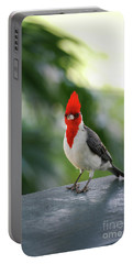 Red Crested Cardinal Bird Standing On A Railing Portable Battery Charger