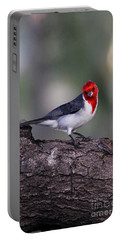 Red Crested Posing Portable Battery Charger