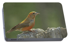 Red Crossbill Portable Battery Charger by Constance Puttkemery