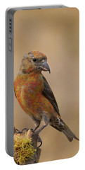 Red Crossbill Portable Battery Charger