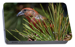 Red Crossbill Portable Battery Charger by Michael Cunningham
