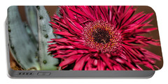 Portable Battery Charger featuring the photograph Red Daisy And The Cactus by Diana Mary Sharpton