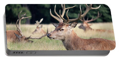 Red Deer Stags Richmond Park Portable Battery Charger