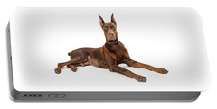 Red Doberman Pinscher Dog Lying Profile Portable Battery Charger