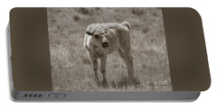 Portable Battery Charger featuring the photograph Red Dog Buffalo Calf by Rebecca Margraf