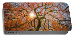 Portable Battery Charger featuring the photograph Red Dragon Japanese Maple In Autumn Colors by William Lee