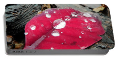 Red Fall Leaf Portable Battery Charger