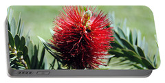 Callistemon - Bottle Brush 7 Portable Battery Charger