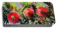 Callistemon - Bottle Brush 6 Portable Battery Charger
