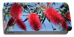 Callistemon - Bottle Brush 3 Portable Battery Charger