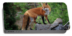 Red Fox 4 Portable Battery Charger