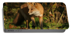 Portable Battery Charger featuring the photograph Red Fox by Doris Potter
