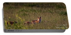 Portable Battery Charger featuring the photograph Red Fox Family by Brad Allen Fine Art