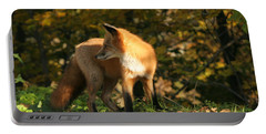 Portable Battery Charger featuring the photograph Red Fox In Shadows by Doris Potter
