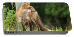 Red Fox In The Rain Portable Battery Charger
